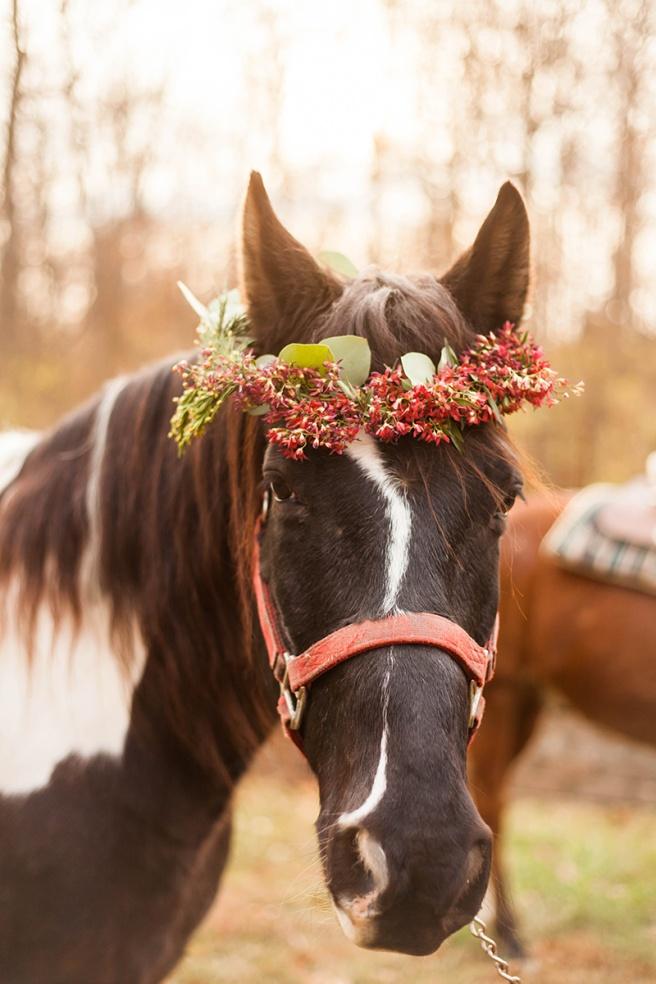 Christmas-horse-styled-shoot-186.jpg